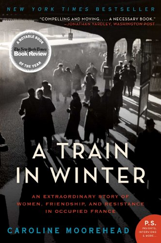 Cover image for A Train in Winter