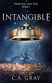 Cover image for Intangible (Piercing the Veil Book 1)