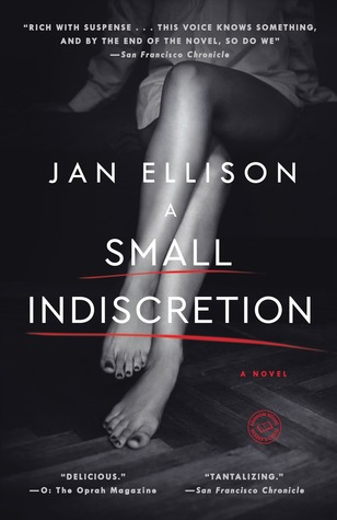 Cover image for A Small Indiscretion