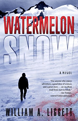 Cover image for Watermelon Snow