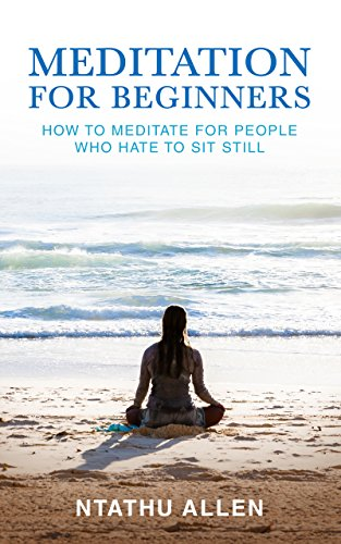 Cover image for Meditation for Beginners: How to Meditate for People Who Hate to Sit Still