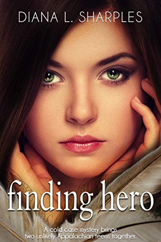 Cover image for Finding Hero: A Young Adult Mystery (Quincy High Mysteries Book 1)
