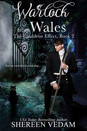 Cover image for Warlock from Wales: The Cauldron Effect, Book 2