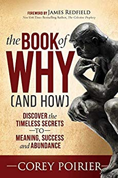 Cover image for The Book of WHY (and HOW): Discover the Timeless Secrets to Meaning, Success and Abundance